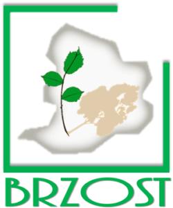 logo_brzost